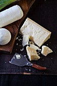 Various types of cheese: parmesan, mozzarella and goat's cheese