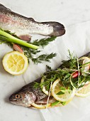 Trout wrapped in string with lemon and herbs