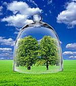 Environmental care, conceptual image