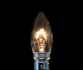 Tungsten filament candle light bulb