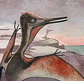 Pterodactyl flying reptile, illustration