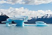 Melting iceberg, Patagonia