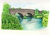 Bridge over the Evenlode river, UK, illustration
