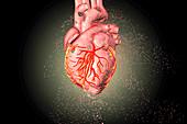 Heart destruction, conceptual illustration