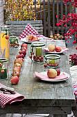Laendliche Apfel-Tischdeko mit Malus ( Aepfeln ) in Reihe