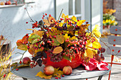 Herbstgesteck aus Zweigen von Amelanchier ( Felsenbirne ), Celastrus