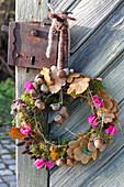 Kranz aus Moos, Zweigen, Blaettern und Fruechten von Quercus