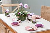 Weihnachtliche Tischdeko mit Schmetterlingsorchideen