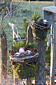 Drahtkoerbe mit Moos, Zapfen, Pinus ( Kiefer ) und silbernen Christbaumkugeln