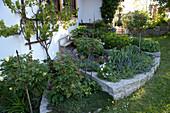 Terrassierte Beete mit Mauern aus Granit, bepflanzt mit Rosa ( Rosen