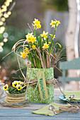 Narcissus 'Tete a Tete' ( Narzissen ) mit Gras dekoriert, als Geschenk
