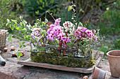 Frühlings-Gesteck in Glas-Jardiniere mit Moos :  Blüten von Bergenia