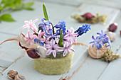 Kleines Gesteck in Glas mit Filzverkleidung : Hyacinthus ( Hyazinthen )