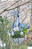 Müslischale mit blauer Schnur zur Ampel umfunktioniert und an Baum gehängt