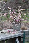 Duftender Strauß aus Viburnum bodnantense 'Dawn' ( Winterschneeball