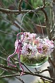 Einmachglas als Windlicht mit Kränzchen aus Viburnum bodnantense 'Dawn'