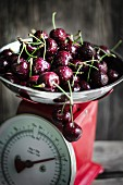 Fresh cherries on a kitchen scale