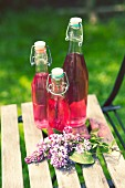 Three bottles of lilac blossom syrup in a garden