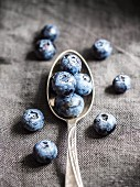 Blueberries on a silver spoon, close up