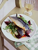 Mackerel on a beetroot salad