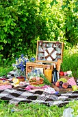 A summer picnic in a meadow