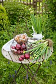 Various onions on a table in a garden