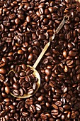 Coffee beans with an ornate brass spoon