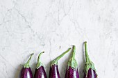 Eggplants in a row