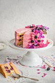 Festive blackberry sponge cake with blackberry cream on a cake stand, sliced