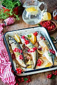 Roasted mackerel with red currants, garlic and lemon