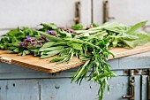 Assortment of fresh herbs mint, oregano, thym, blooming sage on cutting board over old blue white wooden kitchen table