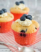 A cupcake with blueberries