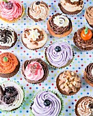 Various cupcakes for parties