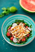 Watermelon salad with chicken, rocket and radishes