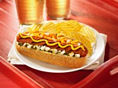 Grilled hot dog with cheese, mustard, onions and relish