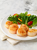 Seared Scallops with Wilted Greens Salad