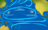 Great Pacific garbage patches, illustration