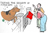 Testing the security of a field gate by W. Heath Robinson b