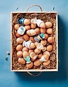 Braune Eier und Eierbecher in einer Holzkiste mit Stroh