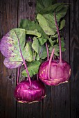 Two purple kohlrabis with leaves