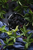 Fresh blackberries with leaves