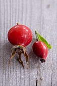Two rose hips