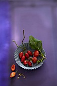 Fresh rosehips in a small baking tin