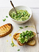 Broad bean and pea spread with basil and parmesan on toasted bread