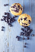 Blueberry muffins and fresh blueberries on a blue background
