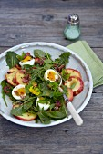 Dandelion leaf salad with apple and egg