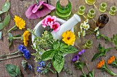 Verschiedene Heilblüten, Kräuter und Öle mit Mörser