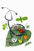 Various healing flowers and herbs next to a stethoscope