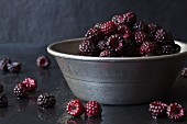 Freshly Picked Wild Black Raspberries in a Metal Bowl on Slate