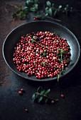 Fresh lingonberries (Vaccinium vitis-idaea) in a bowl